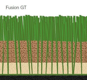 fusion-gt-grafik